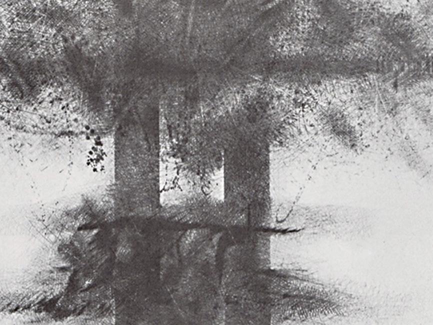 Doppelsäule (Lanyon Quoit), 1979
