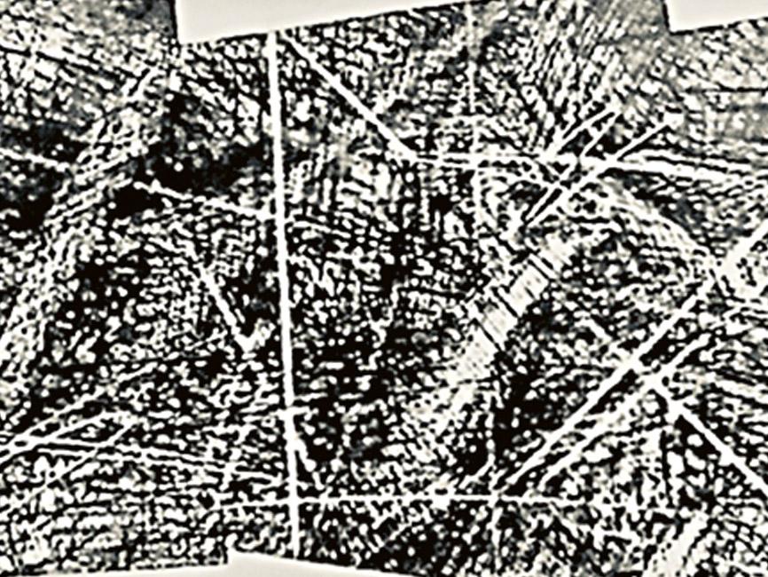Flugtraum rasend, 1981