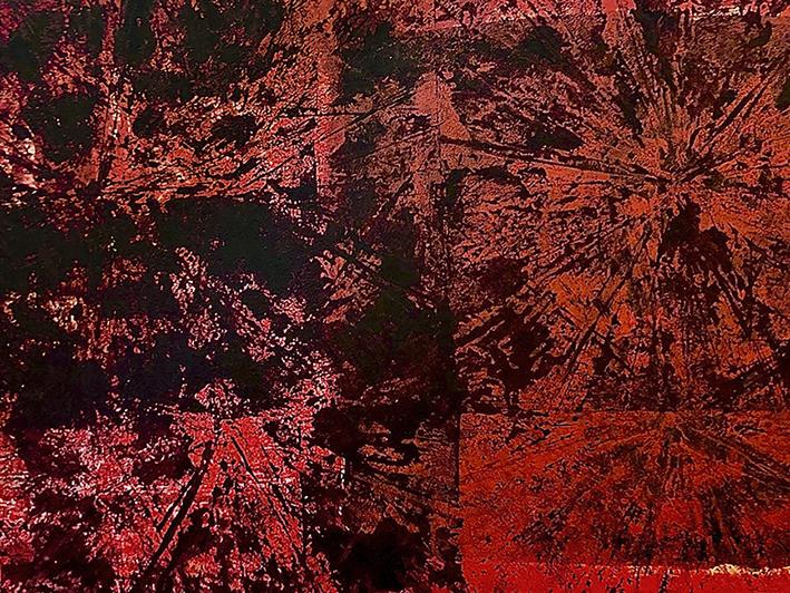 DENK ART Plasticolor Red Up Black Down 2020/21